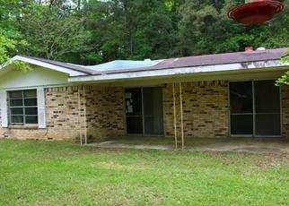 Foreclosed Home in Woodville 75979 W HOLLY ST - Property ID: 4498290939
