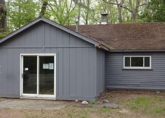 Foreclosed Home in Newaygo 49337 KING ST - Property ID: 4498583496