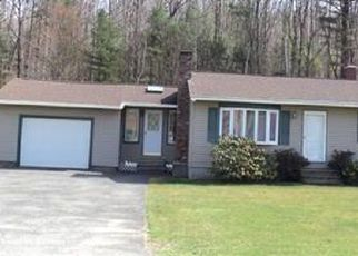 Foreclosed Home in Pittsfield 01201 PECKS RD - Property ID: 4498621152