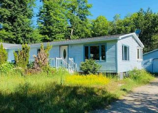 Foreclosed Home in Newberry 49868 COUNTY ROAD 384 - Property ID: 4499517246