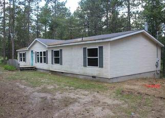 Foreclosed Home in Grayling 49738 RUSTIC LN - Property ID: 4499519444