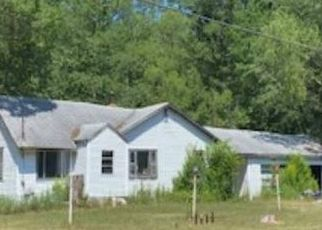 Foreclosed Home in Big Rapids 49307 190TH AVE - Property ID: 4499530842