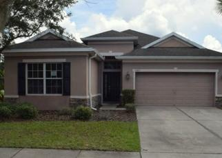Foreclosed Home in Lithia 33547 NEW CROSS CIR - Property ID: 4499556226