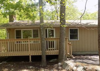 Foreclosed Home in Bushkill 18324 LAUREL CT - Property ID: 4500596874