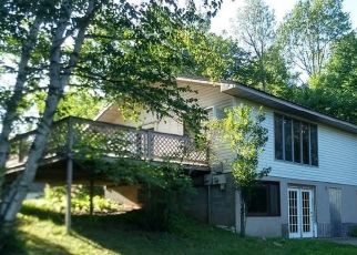 Foreclosed Home in Duluth 55803 REID RD - Property ID: 4500796134