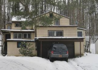 Foreclosed Home in Binghamton 13903 PARK TERRACE PL - Property ID: 4502056180