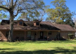 Foreclosed Home in Brazoria 77422 COUNTY ROAD 678 - Property ID: 4503013154