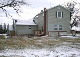 Foreclosed Home in Carsonville 48419 E CHANDLER ST - Property ID: 4504674846
