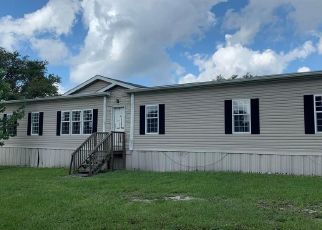 Foreclosed Home in Eustis 32736 STEWARD RD - Property ID: 4505606853