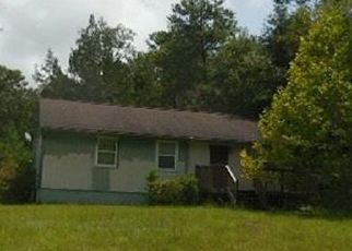 Foreclosed Home in Interlachen 32148 DEL MONACO AVE - Property ID: 4506857256