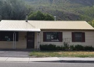 Foreclosed Home in Glenwood Springs 81601 SOPRIS AVE - Property ID: 4507781379