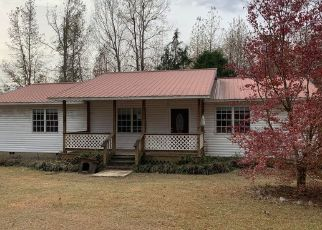 Foreclosed Home in Nauvoo 35578 JOHNSON RD - Property ID: 4507854530