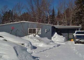 Foreclosed Home in White Pine 49971 ELM ST - Property ID: 4508377918