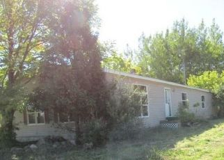 Foreclosed Home in Twining 48766 N BRIGGS RD - Property ID: 4508382731