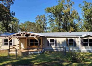 Foreclosed Home in Center 75935 COUNTY ROAD 1095 - Property ID: 4509009914