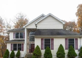 Foreclosed Home in Bushkill 18324 DECKER RD - Property ID: 4509555624