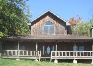 Foreclosed Home in Elizabethtown 62931 1ST ST - Property ID: 4509745258