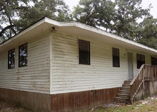 Foreclosed Home in Bushnell 33513 SW 21ST ST - Property ID: 4509776803