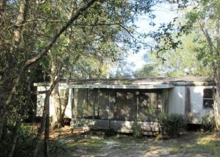 Foreclosed Home in Deland 32720 SHADOW LN - Property ID: 4509777227