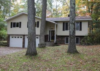 Foreclosed Home in Roscommon 48653 RISING FAWN TRL - Property ID: 4509856958