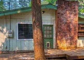 Foreclosed Home in Placerville 95667 BUCKS BAR CT - Property ID: 4510120607