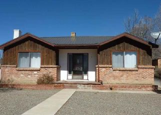 Foreclosed Home in Raton 87740 E TROY AVE - Property ID: 4511306642
