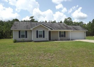 Foreclosed Home in Hortense 31543 BEST LOOP - Property ID: 4511399944