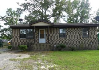 Foreclosed Home in Roanoke Rapids 27870 SOUTHGATE DR - Property ID: 4513090509