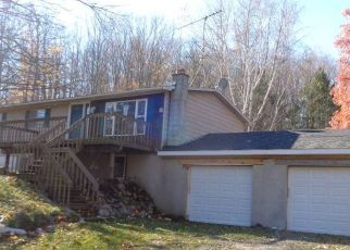 Foreclosed Home in Central Lake 49622 CLARK RD - Property ID: 4513904704