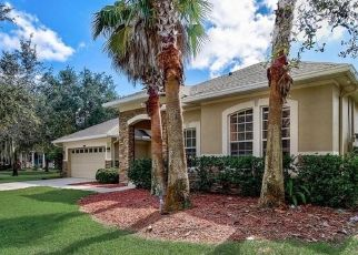 Foreclosed Home in Land O Lakes 34637 BUTTERSCOTCH TER - Property ID: 4517385274