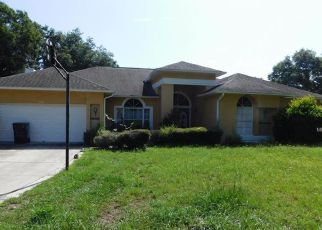 Foreclosed Home in Valrico 33596 COUNTRY CREEK LN - Property ID: 4517696235