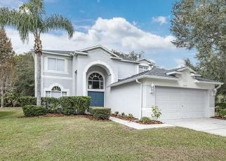 Foreclosed Home in Tampa 33647 LUCAYA DR - Property ID: 4519010149