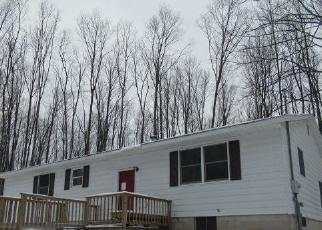 Foreclosed Home in Rapid City 49676 SPUR RD - Property ID: 4520205842