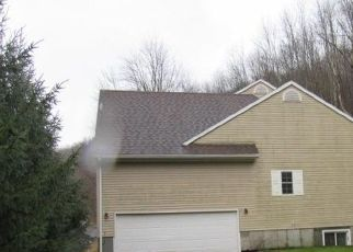 Foreclosed Home in Oneonta 13820 SWART HOLLOW RD - Property ID: 4521250401