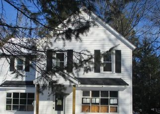 Foreclosed Home in Narrowsburg 12764 3RD AVE - Property ID: 4521595524
