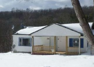 Foreclosed Home in Lowman 14861 HOFFMAN HOLLOW RD - Property ID: 4522286201