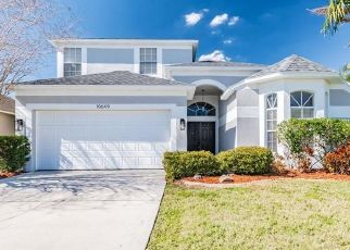 Foreclosed Home in New Port Richey 34655 EVENINGWOOD CT - Property ID: 4523403928
