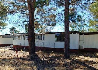 Foreclosed Home in Elfrida 85610 N HIGHWAY 191 - Property ID: 4523708302