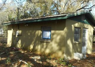 Foreclosed Home in Odessa 33556 SASSANDRA DR - Property ID: 4525076542