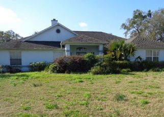 Foreclosed Home in Ocala 34471 SE 28TH LN - Property ID: 4526262129