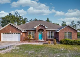 Foreclosed Home in Crestview 32536 TERRITORY LN - Property ID: 4526438194