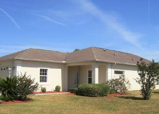 Foreclosed Home in Hernando 34442 E IBIS COVE CT - Property ID: 4528445436
