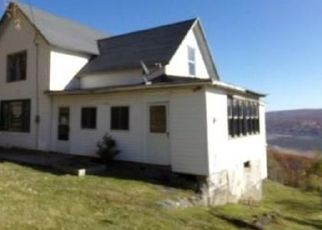 Pre Foreclosure in Naples 14512 COUNTY ROAD 12 - Property ID: 1025919204