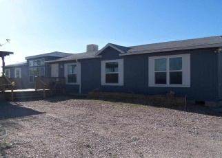 Pre Foreclosure in Fallon 89406 EQUESTRIAN DR - Property ID: 1051273526