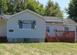 Pre Foreclosure in Narrowsburg 12764 STATE ROUTE 52 - Property ID: 1054774694