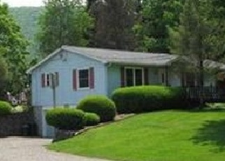 Pre Foreclosure in Bath 14810 LARUE RD - Property ID: 1058479962