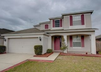 Pre Foreclosure in Riverview 33579 AMBER SKY PL - Property ID: 1059533720
