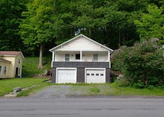 Pre Foreclosure in Ilion 13357 SPINNERVILLE GULF RD N - Property ID: 1060240605