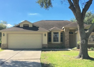 Pre Foreclosure in Plant City 33566 SILVER MEADOW WAY - Property ID: 1060710108