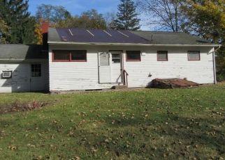 Pre Foreclosure in Amenia 12501 BROADWAY - Property ID: 1065233509